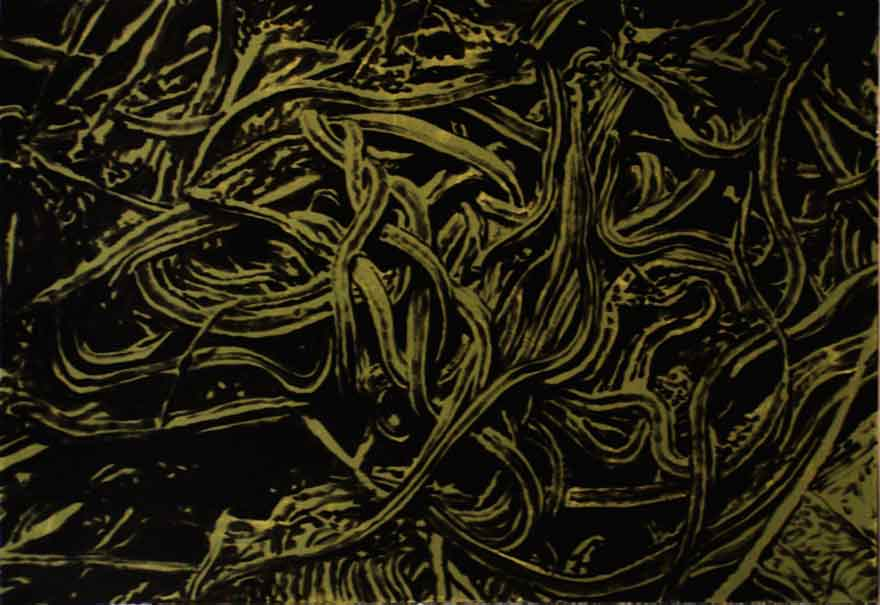 Snakepit 3 Enamel On Board 1,2x1,8m 2012